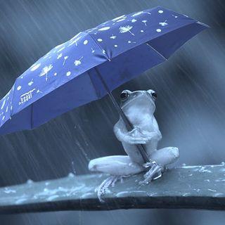 Notre mission : permettre à chacun de pouvoir s'abriter sous un Beau Nuage !� . �Our mission: to enable everyone to take shelter under a Beau Nuage!� .  #beaunuagepourtous #beaunuage #monbeaunuage #parapluie #pluie #umbrella #rain #bleuonirique #dreamlikeblue